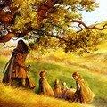 Illustrations du Seigneur des anneaux (et +)