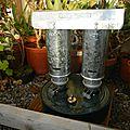 Cultiver des plantes exotiques et chauffage