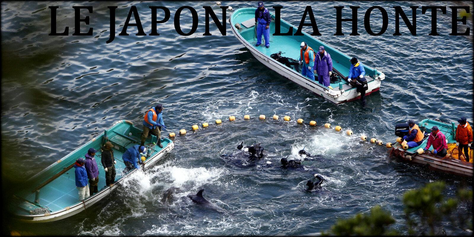 JAPON CRIMINEL @ LA HONTE !...