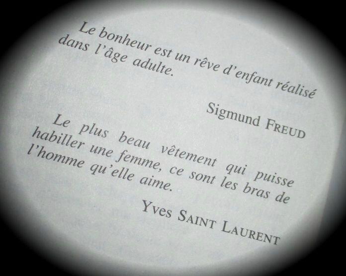 Agnès Martin Lugand Entre mes mains le bonheur se faufile (1)
