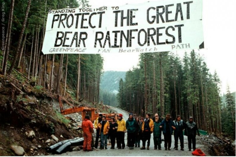 gbr_greenpeace_greg_king_protest