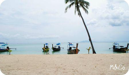 thai-bateaux