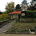 Les vignes du parc Georges Brassens.