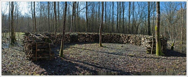 Marais Naillers bois fer à cheval pano 220215