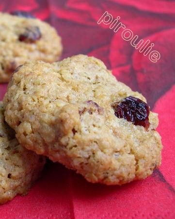 cookies_flocons_avoine__5_