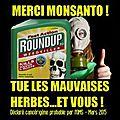 Roundup : le désastre agricole absolu qui a fait baissé de 30% les vitamines et les oligo elements des plantes