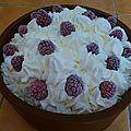 Gâteau glacé framboise et chantilly 4