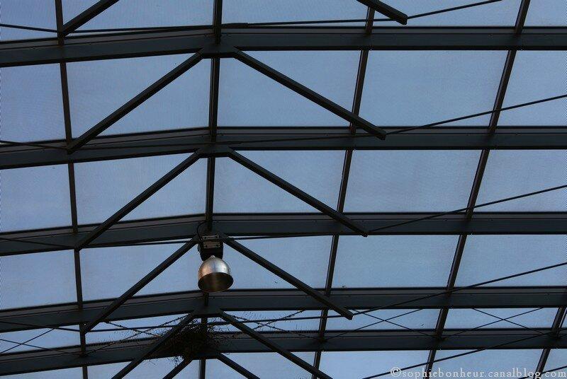 art cité toit