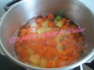 Soupe de légumes08
