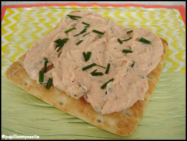 rillettes de saumon_2