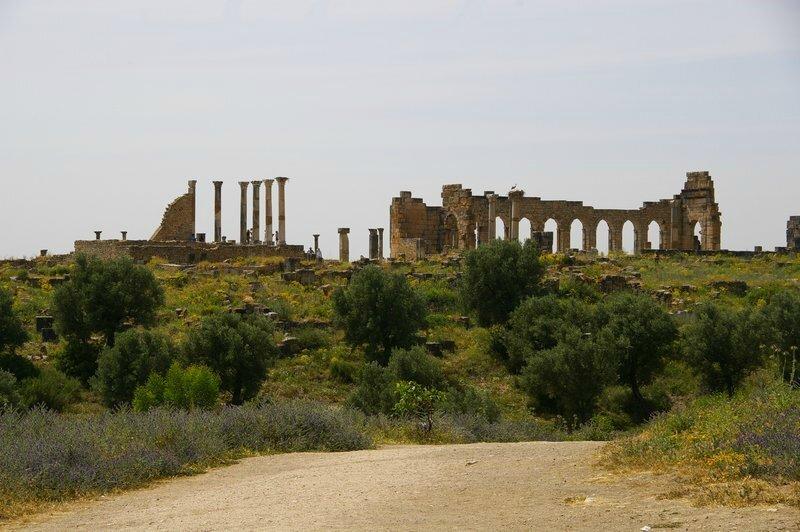 cb-ruines de Volubilis (1)