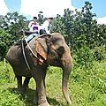 treck eleph DSCN2196