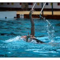 natation synchro 006 copie