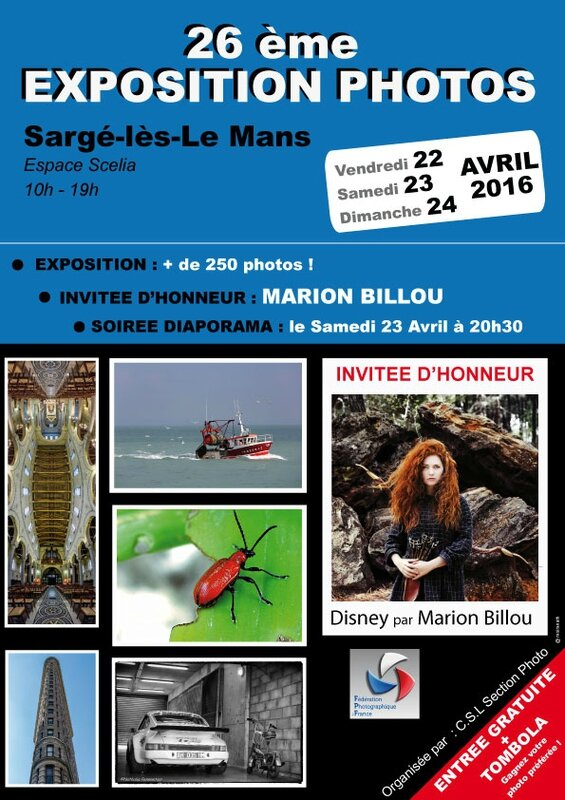 AFFICHE-EXPO-SARGE-2016-#2-