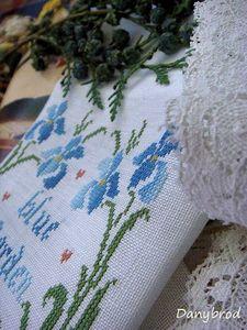 iris blue garden1