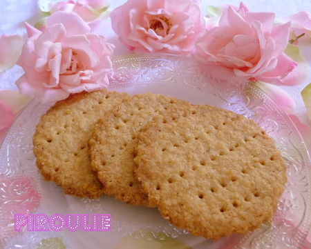digestive_biscuit__4_