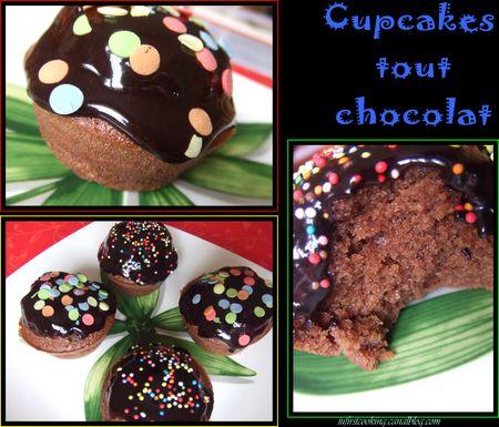 Cupcakes_version_chocolat_045OK