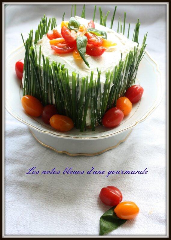 cake_sal__les_notes_bleues_d_une_gourmande