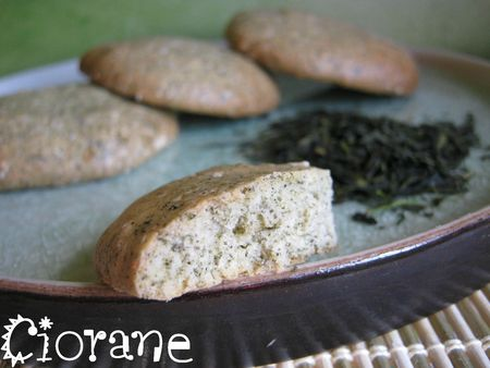biscuit-au--the-sencha-fukuyu