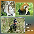 parc-des-oiseauxenvoi