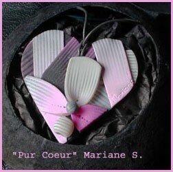 pur_coeur_ray_
