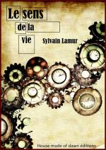 Le sens de la vie - Sylvain Lamur