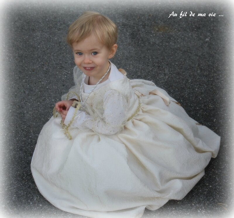 Robe princesse Peau d'ane ICdF Home made10