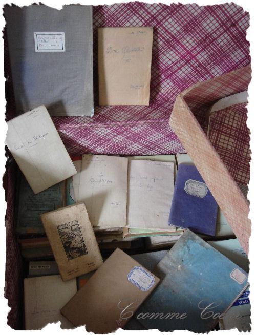 livres_dans_malle