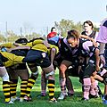 HORNETS_2011-10-16_RCP15_DOM_BIC_PICT0346