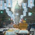 Avenida de Mayo - Macho - aux couleurs de l'Argentine