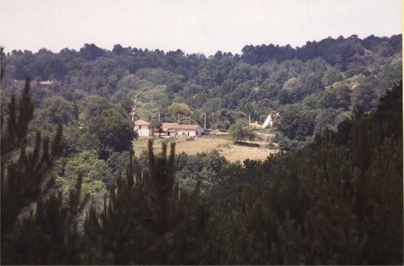 Pareynou vu depuis Borie-Petit