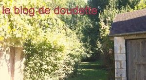 BLOG DOUDETTE