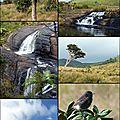 Sri lanka: voyage de décembre photos/jour suite et fin