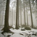 westweg... brouillard givrant et neige