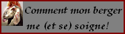 comment_mon_berger_se_soigne