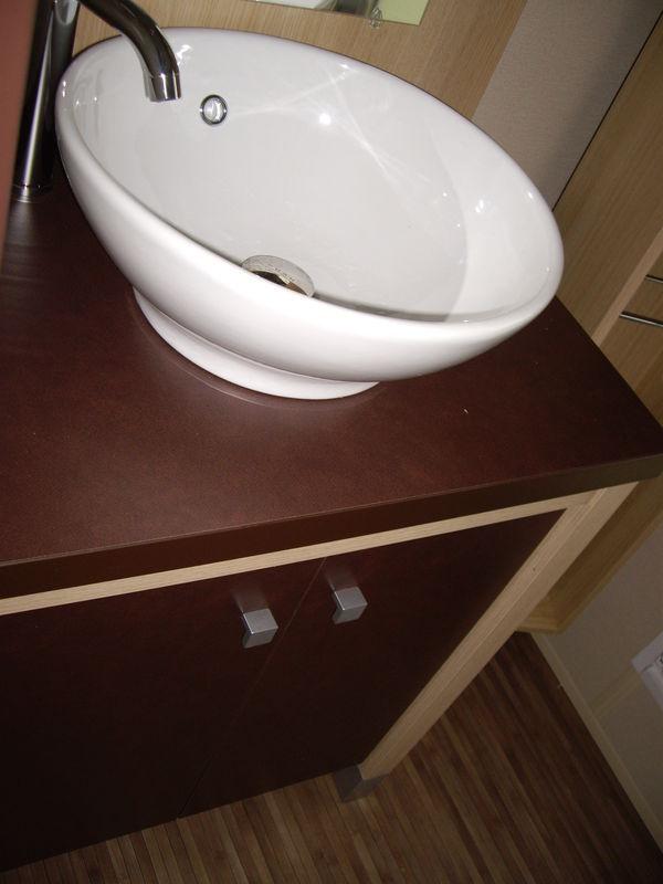 La salle de bain 1 lavabo 1 cabine de douche mobil home for Cabine de douche toilette lavabo