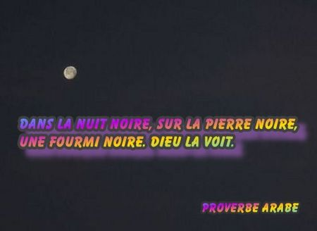 proverbearabe_nuitnoire