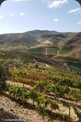 Symington-Graham-Porto-Douro-57_thumb[1]