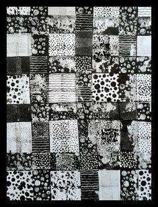 76_Noir et Blanc_Jeux d'empreintes (39)