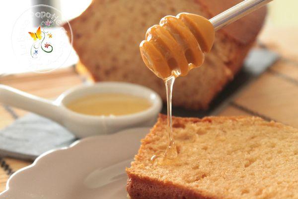 gâteau youart miel IG bas