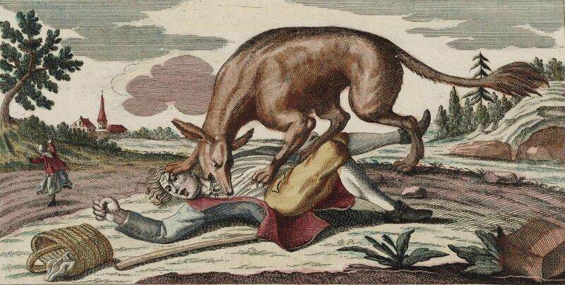 Bête_du_Gévaudan_(1764)
