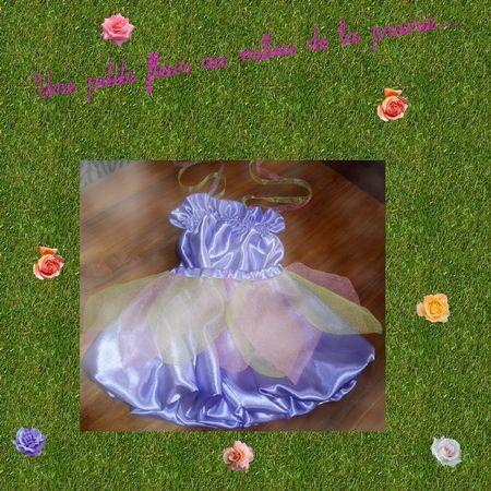 la_robe_d_Arianne_pour_son_spectacle