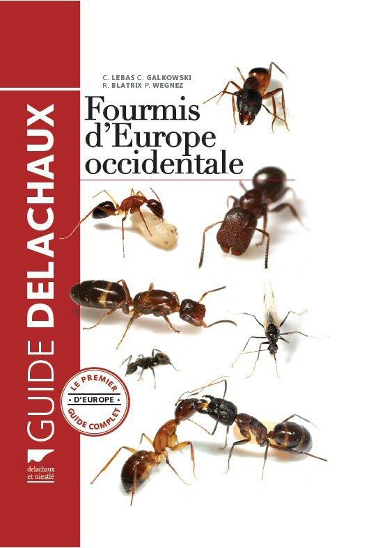 guide_delachaux_fourmis_europe_lebas