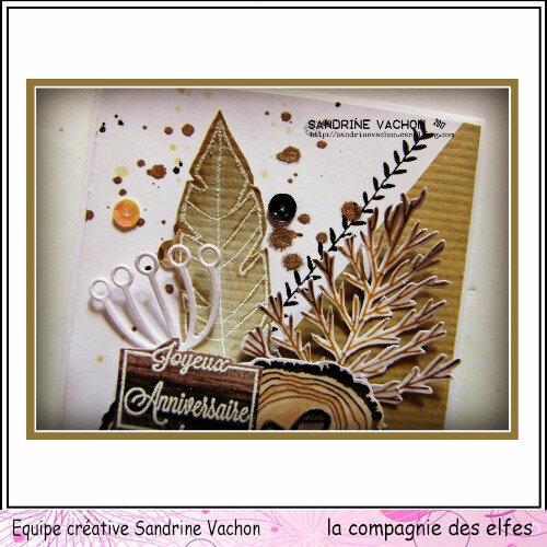 Sandrine VACHON dt LA COMPAGNIE DES ELFES (2)