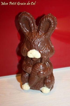 ChocolatMoulage2