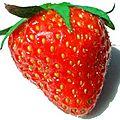 Tiramissu express aux fraises