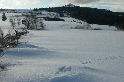 2008 12 30 Le Lizieux et la neige