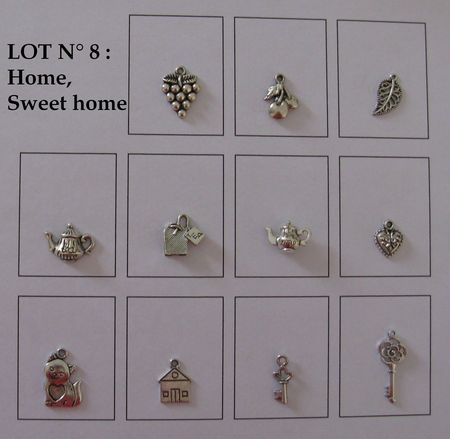 LOT 8 HOME