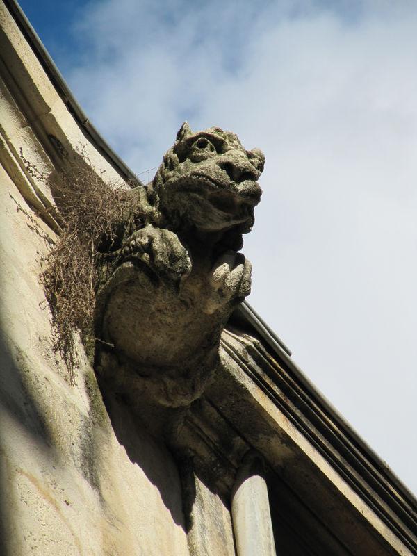 Montpellier_Gargouille_Centre_historique_2009