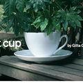Vous prendrez bien une tasse de thé?!